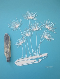 Dandelion Seeds on Kyanite Papercut WHITE Full Shot